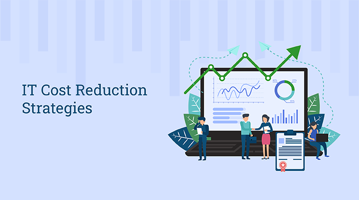 IT Cost Reduction Strategies